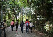 箱根の山をのぼる
